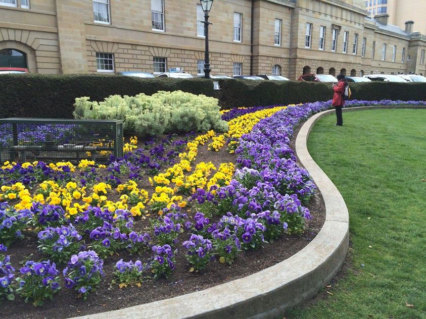 Lawn in front of Hobart Parliament House