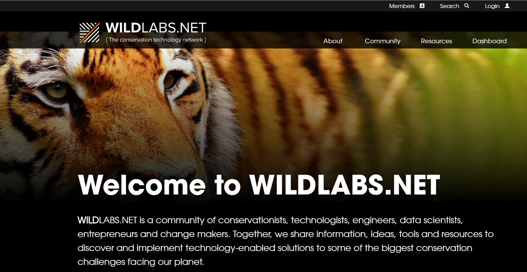 A [WildLabs.Net (https://www.wildlabs.net/) website screenshot