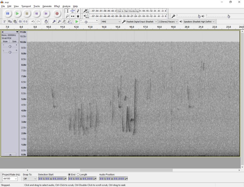 Audacity interface showing spectrogram
