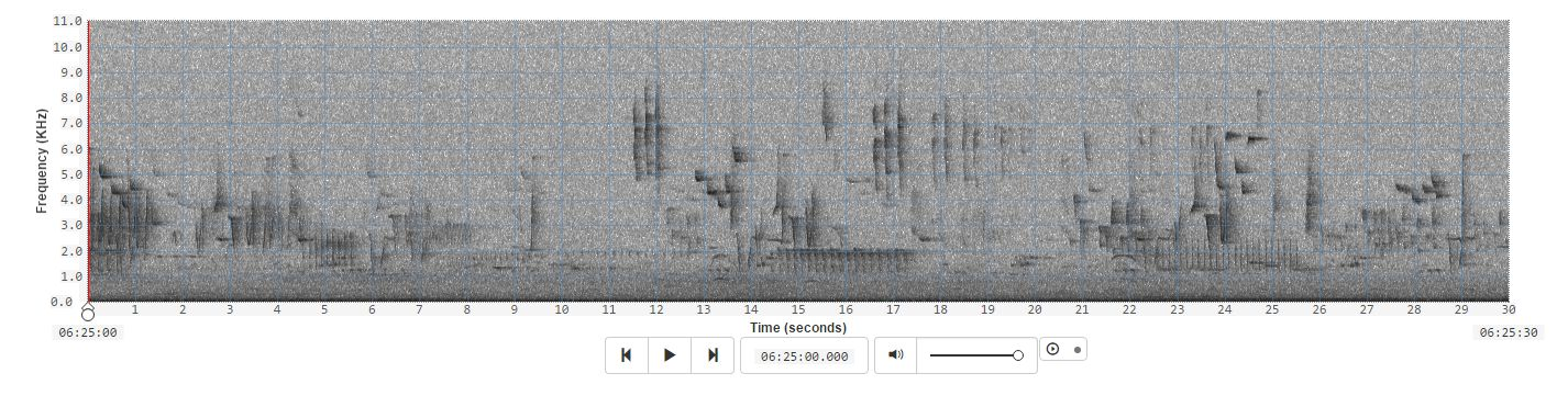 Interfaces for Analysing Long Duration Audio